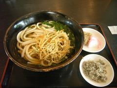 udon_shikoku.JPG